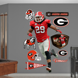 NCAA Jarvis Jones Georgia Bulldogs 2013 Wall Decal Sticker Wall Decal