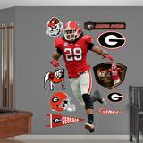NCAA Jarvis Jones Georgia Bulldogs 2013 Wall Decal Sticker Wall Decal