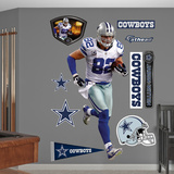 NFL Dallas Cowboys Jason Witten - Away Wall Decal Sticker Wall Decal