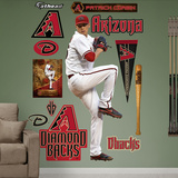 Arizona Diamondbacks Patrick Corbin Wall Decal Sticker Wall Decal