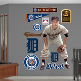 Detroit Tigers Al Kaline Wall Decal Sticker Wall Decal
