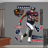 NFL Houston Texans Arian Foster - Running Back Wall Decal Sticker Wall Decal