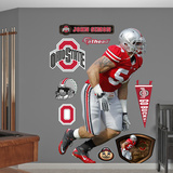 NCAA John Simon Ohio State Buckeyes 2013 Wall Decal Sticker Wall Decal