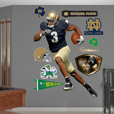 NCAA/NFLPA Notre Dame Fighting Irish Michael Floyd Wall Decal Sticker Wall Decal