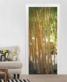 Bamboo Door Wallpaper Mural Wallpaper Mural