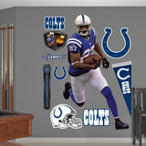 NFL Indianapolis Colts Reggie Wayne Wall Decal Sticker Wall Decal