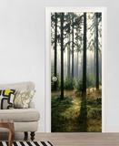 Tannenwald in der Morgensonne Fototapete Türposter Wandgemälde