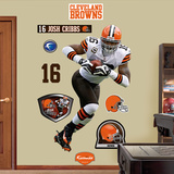 NFL Cleveland Browns Joshua Cribbs Wall Decal Sticker Wall Decal