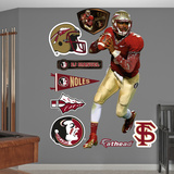 NCAA/NFLPA EJ Manuel Florida State Seminoles 2013 Wall Decal Sticker Wall Decal