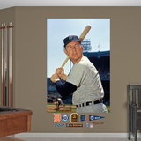 Detroit Tigers Al Kaline Mural Decal Sticker Wall Decal