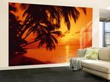 Tropic Sunset Wall Mural