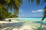 Tropischer Strand mit Palmen Fototapete Wandgemälde