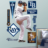 Tampa Bay Rays Matt Moore Wall Decal Sticker Wall Decal