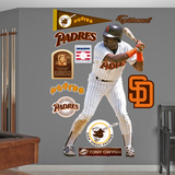 San Diego Padres Tony Gwynn Wall Decal Sticker Wall Decal