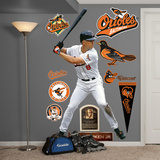 Baltimore Orioles Cal Ripken Wall Decal Sticker Wall Decal