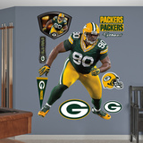 NFL Green Bay Packers B.J. Raji Wall Decal Sticker Wall Decal