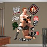 WWE Wrestling Sheamus Wall Decal Sticker Wall Decal