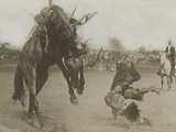 A Rider Topples Off His Horse During a Rodeo Photographic Print by R.R. Doubleday