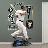 Chicago White Sox Adam Dunn Wall Decal Sticker Wall Decal