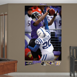 NFL Baltimore Ravens Anquan Boldin Touchdown Catch Mural Decal Sticker Wall Decal