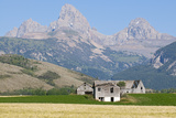 Abandoned Farmhouses and Wheat Fields in Front of the Teton Range Photographic Print by Rich Reid