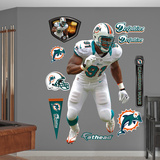 NFL Miami Dolphins Cameron Wake - Away Wall Decal Sticker Wall Decal