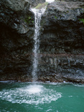 A Waterfall Cascading Into a Pool Photographic Print by Diane & Len Cook & Jenshel