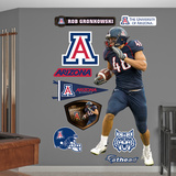NCAA/NFLPA Arizona Wildcats Rob Gronkowski Wall Decal Sticker Wall Decal