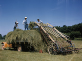 Farmers Work with a Machine to Make Hay Bales Photographic Print by B.Anthony Stewart