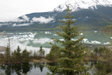 Ice Floes Near Mendenhall Glacier in Juneau, Alaska Photographic Print by Ira Block