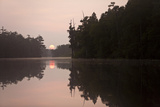 The Sunrise and Cypress Trees Are Reflected in Billy's Lake Photographic Print by Ira Block