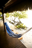 A Hammock Outside a Room At Medjumbe Island Resort in Mozambique Reproduction photographique par Jad Davenport
