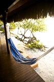 A Hammock Outside a Room At Medjumbe Island Resort in Mozambique Fotografisk tryk af Jad Davenport