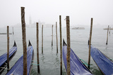 A Rare Snow Shower Powders Gondolas in Venice Near Piazza San Marco Fotografisk tryk af Dave Yoder