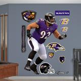NFL Baltimore Ravens Haloti Ngata Wall Decal Sticker Wall Decal