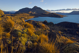 Dawn Light Strikes Grasslands and a Beach Along Lago San Martin Photographic Print by Beth Wald