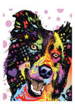 Border Collie Prints by Dean Russo