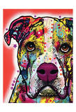 American Bulldog Prints by Dean Russo