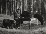 Superintendent Albright of Yellowstone Park Sits with Three Bears Photographic Print by  U.S.National Park Service