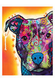 Heart You Pit Bull Prints by Dean Russo