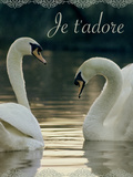 Je t'Adore Prints by Robert Harding