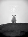 Veni, Vidi, Vici Art by Lee Frost