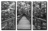 A Walk Into Tranquility Prints by Mike Jones
