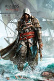 Assassins Creed 4 Shore Stampe