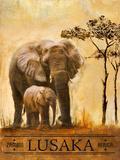 Lusaka, Zambie Affiche par Patricia Quintero-Pinto