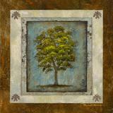 American Oak Square Reprodukcje autor Michael Marcon