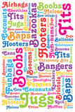 Boob Words   Poster