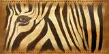Zebra Eye Prints by Patricia Pinto