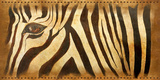 Zebra Eye Prints by Patricia Quintero-Pinto