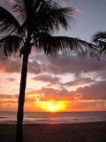 Caribbean Sunset II Poster by Jairo Rodriguez